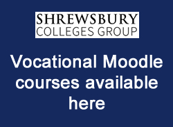 Vocational Moodle courses